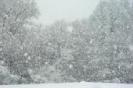 Winter_8